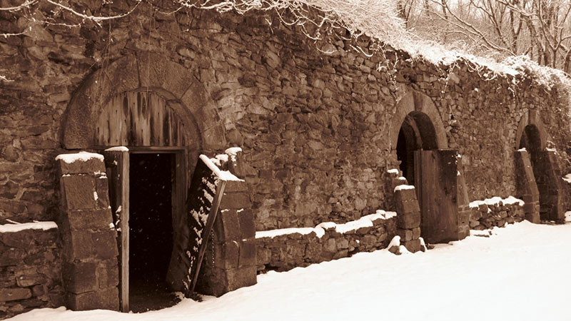 Winter-Cellar
