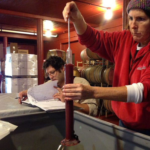Winemaking-7